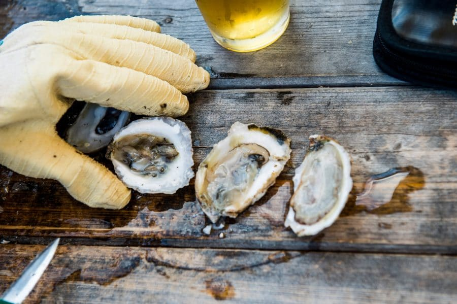 Why Oysters Could Be Good for Your Mental Health